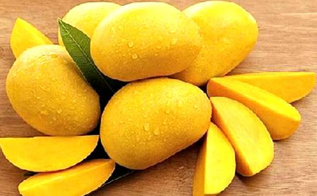 Does Eating Mango Make You Gain Weight - News Nation