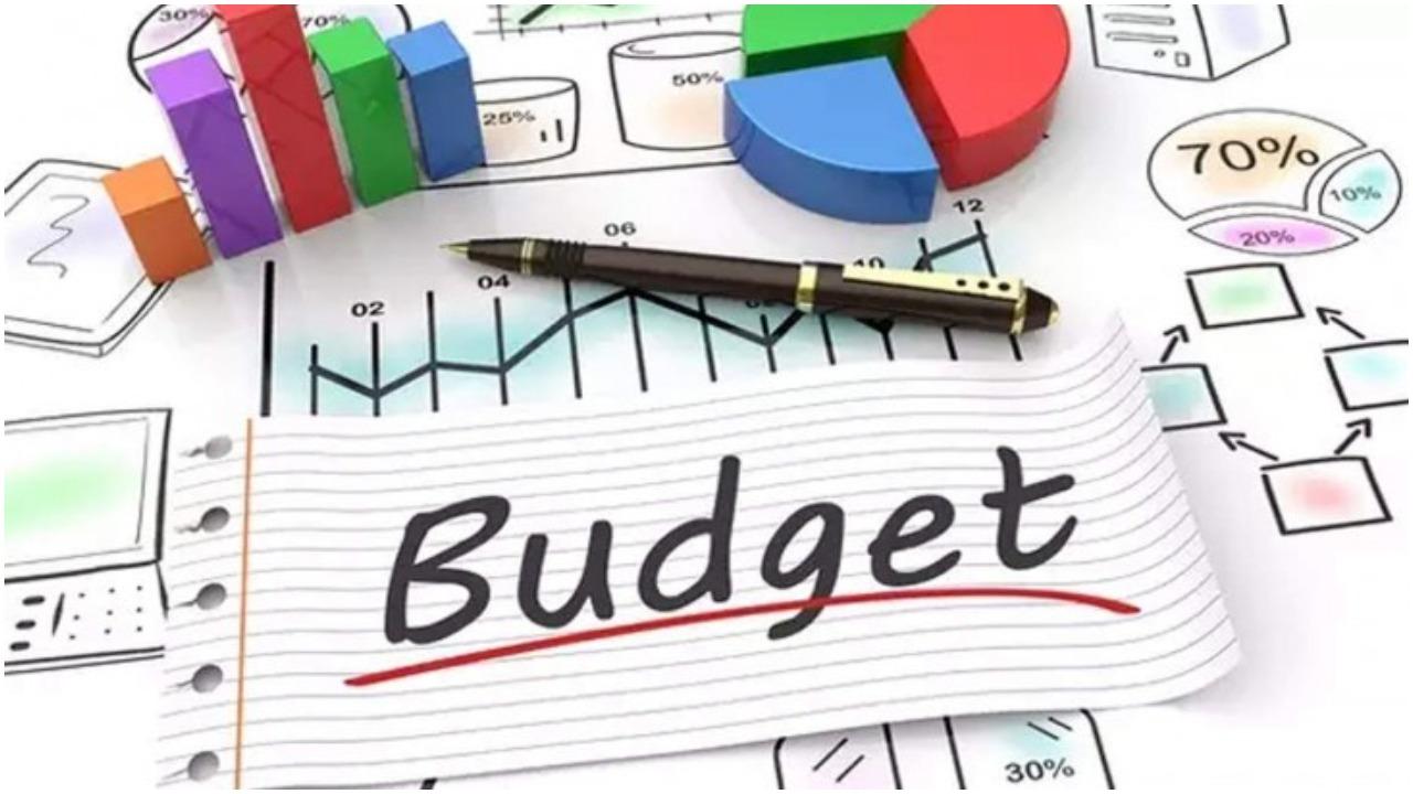 budget 2021 - photo #30
